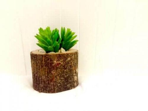 Plantenpot van boomstam