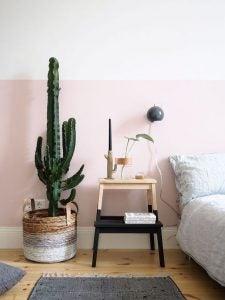 Een grote cactus naast een nachtkastje