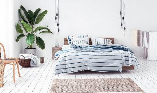 Slaapkamer met een grote plant in een hoek