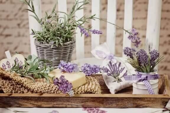Potjes en vaasjes met bloemen