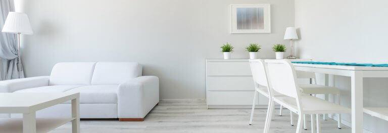Woonkamer met een minimalistische decoratie