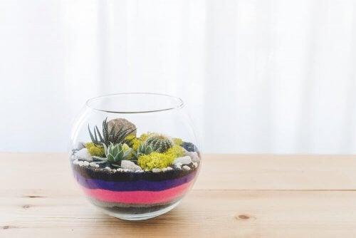 Pot met zand en vetplant