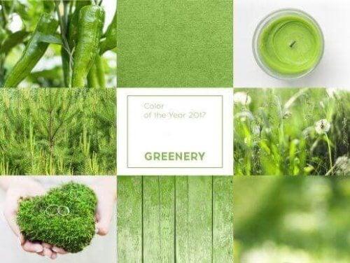 Greenery is een trend die populair blijft