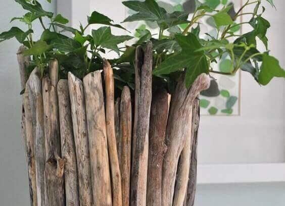 Plantenbak met drijfhout