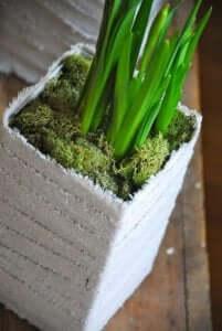 Zelfgemaakte plantenbak