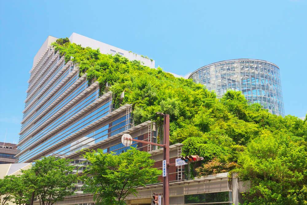 Gebouw met planten op het dak