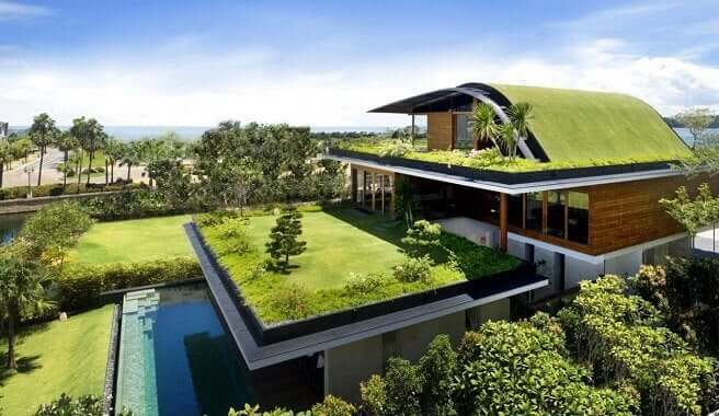 Woning met meerdere groene daken
