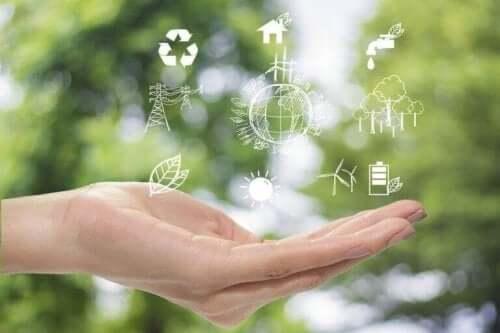 Duurzame decoratie voor een betere planeet