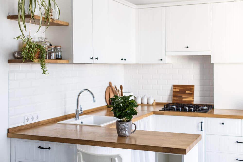 Keuken met planten