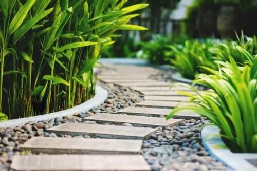 Tips voor het plannen van een tuinpad en de randen