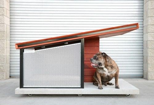 casinhas de cachorro DIY
