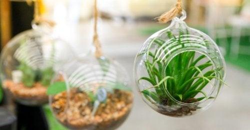Quatro ideias para decorar um pequeno jardim