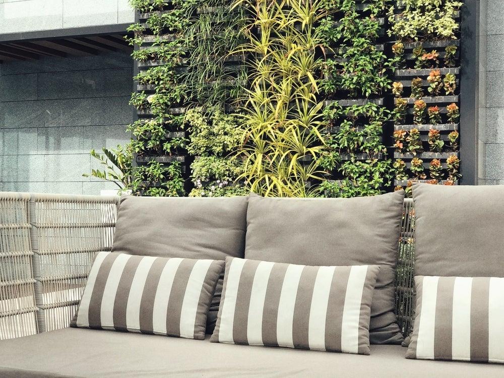 fertilizar jardins verticais