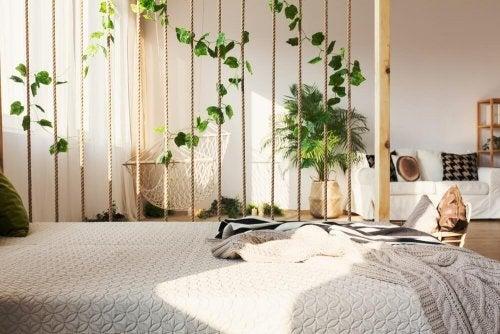 decoração de interior com hera