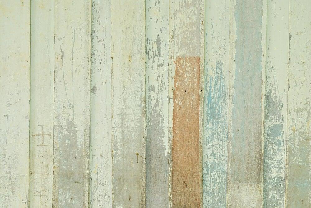 decorar paredes e pisos com madeira
