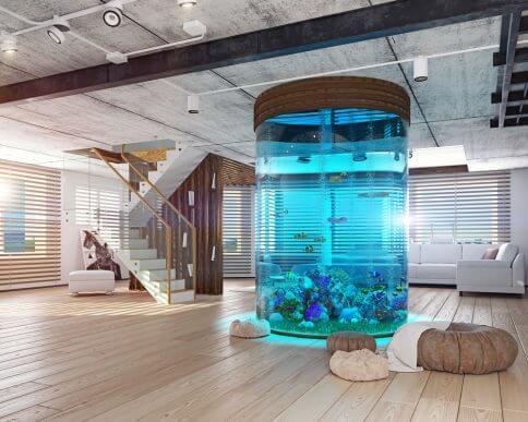 5 belos aquários para ter em casa