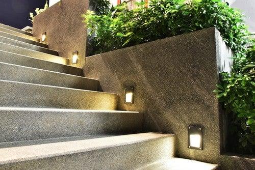 Plantas decorativas na sua escada