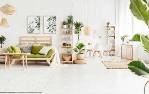 Detalhes naturais para a decoração da sua casa
