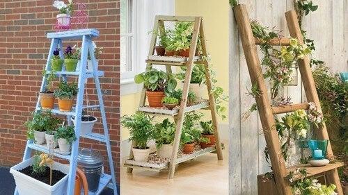 Decore seu suporte para plantas