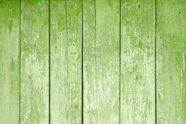 Como introduzir o greenery na sua casa