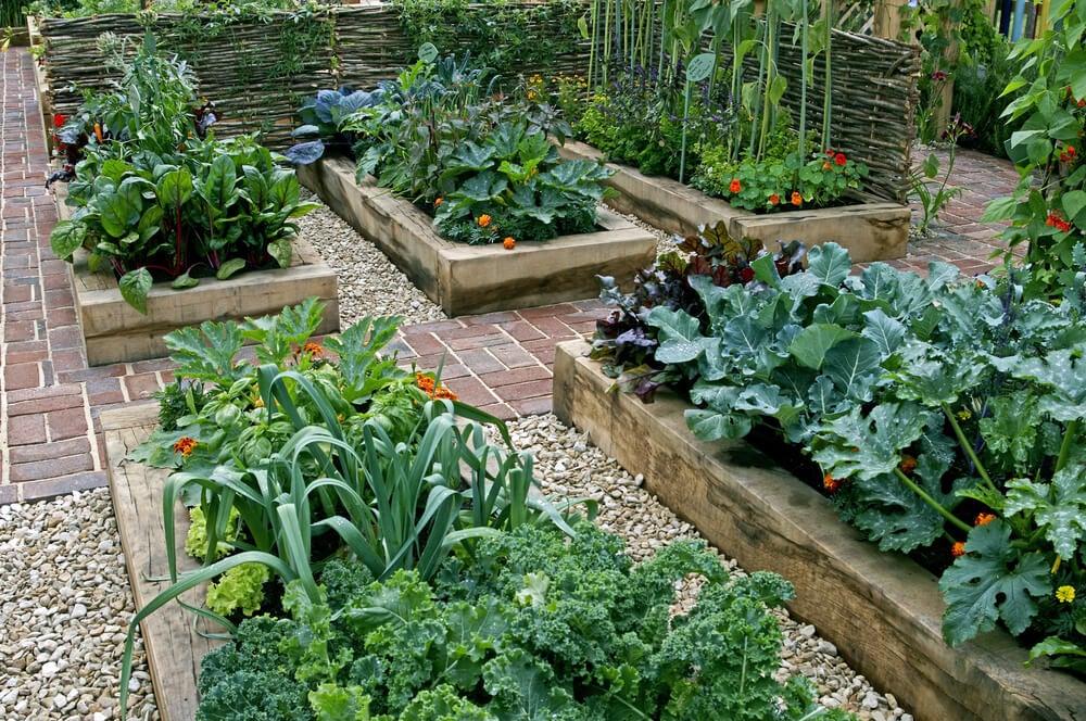 Delimite o perímetro da horta no seu jardim