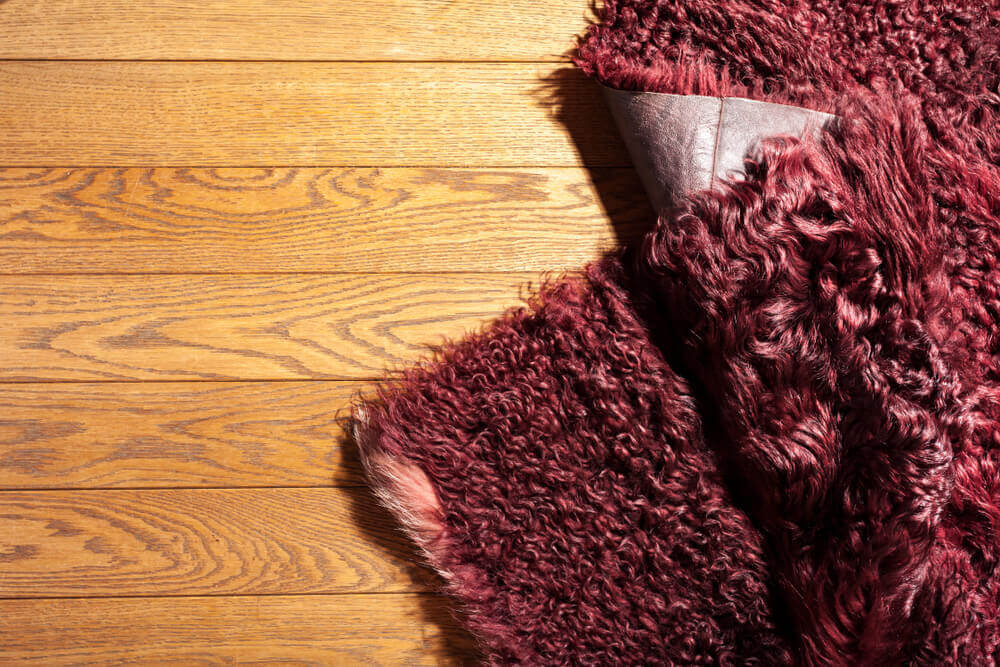 Cuidado com o piso, evite acidentes domésticos