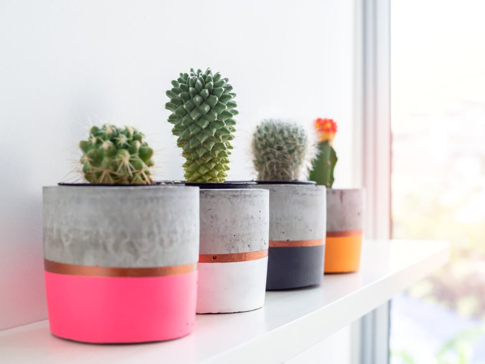 ideias para decorar um pátio de concreto