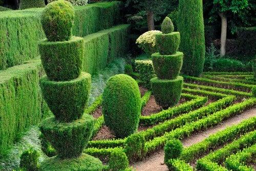 Propostas de jardins simples mas elegantes
