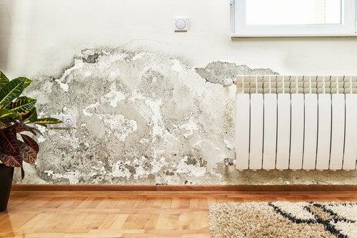 Uma das melhoresmaneiras de identificar problemas no encanamento é quando surgem manchas de umidade
