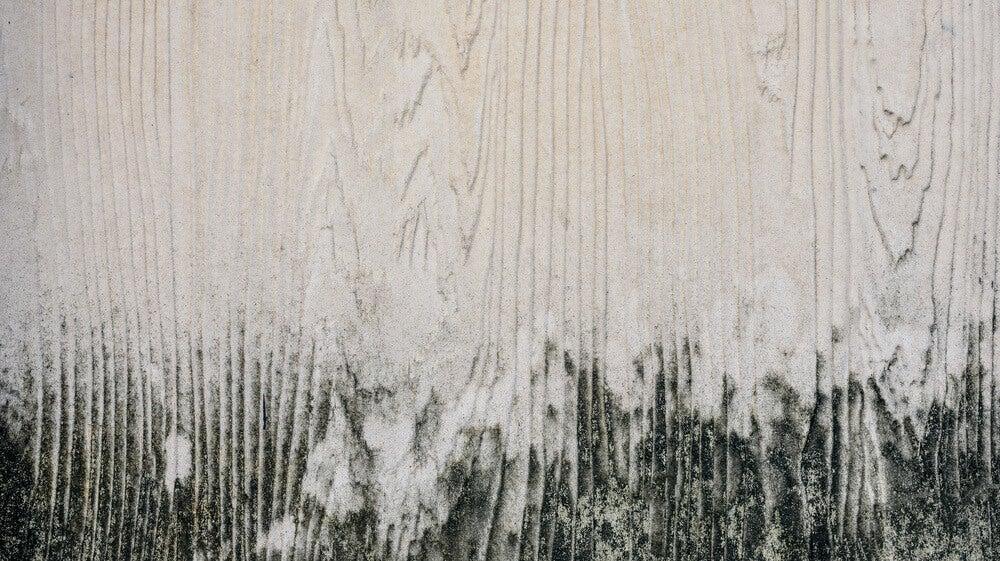 Como remover manchas de mofo da madeira