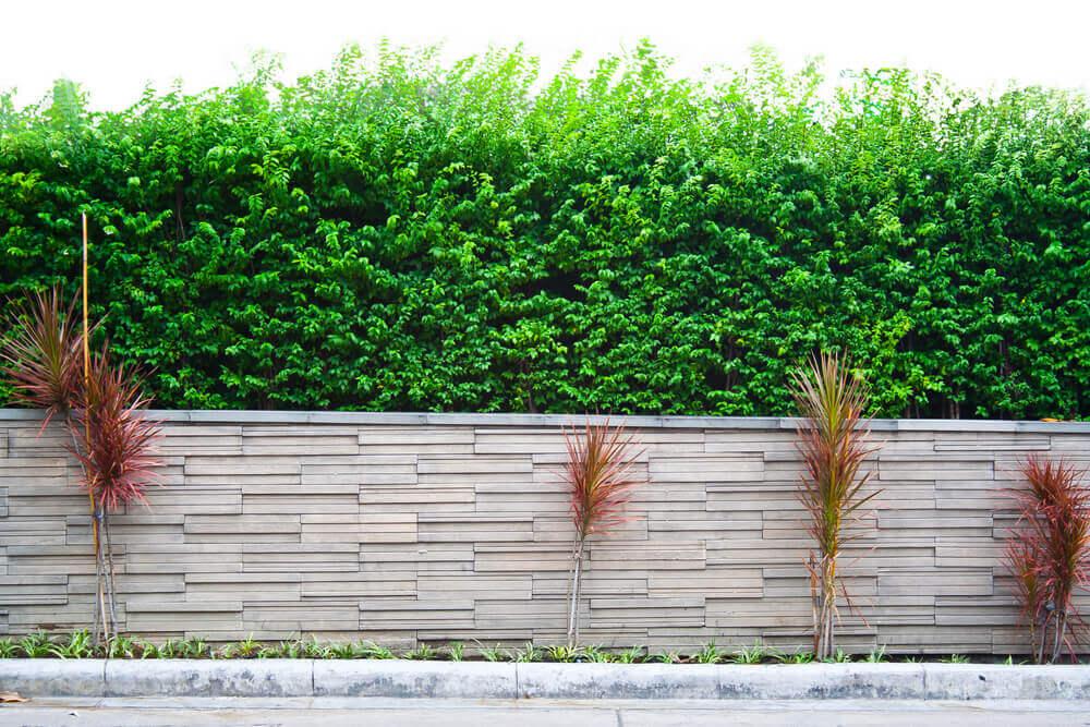 Tipos de muro para o jardim