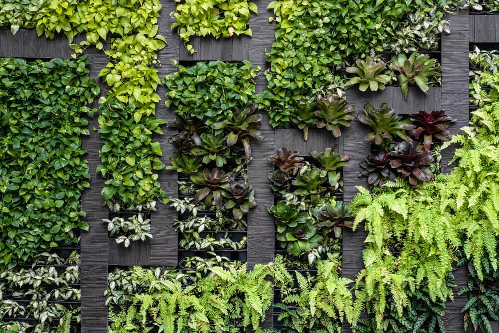 Tipos de muro para o jardim da sua casa