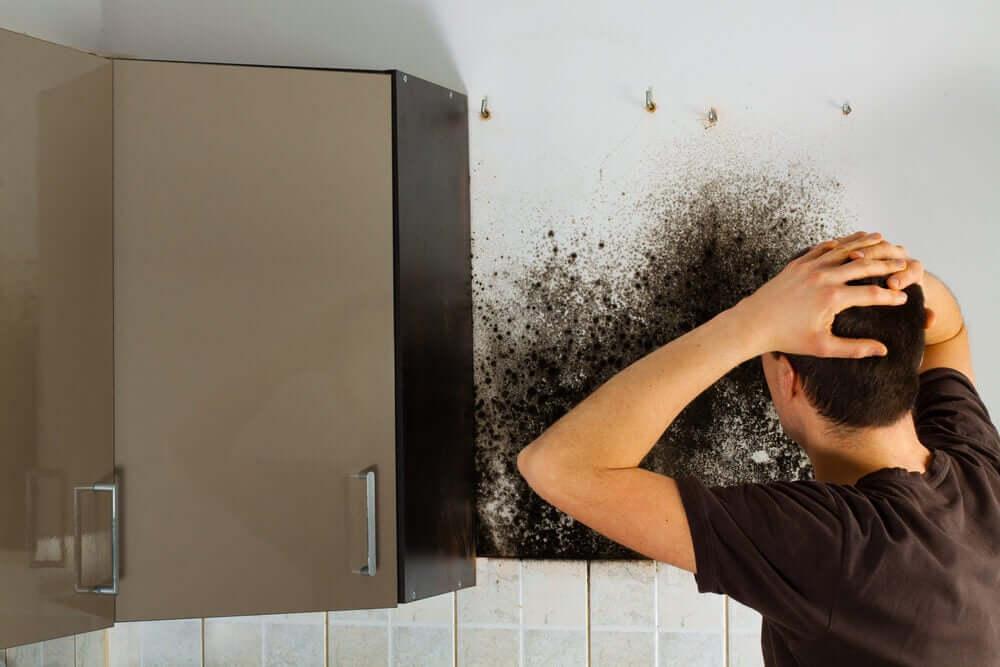 Como a umidade afeta as roupas no armário?