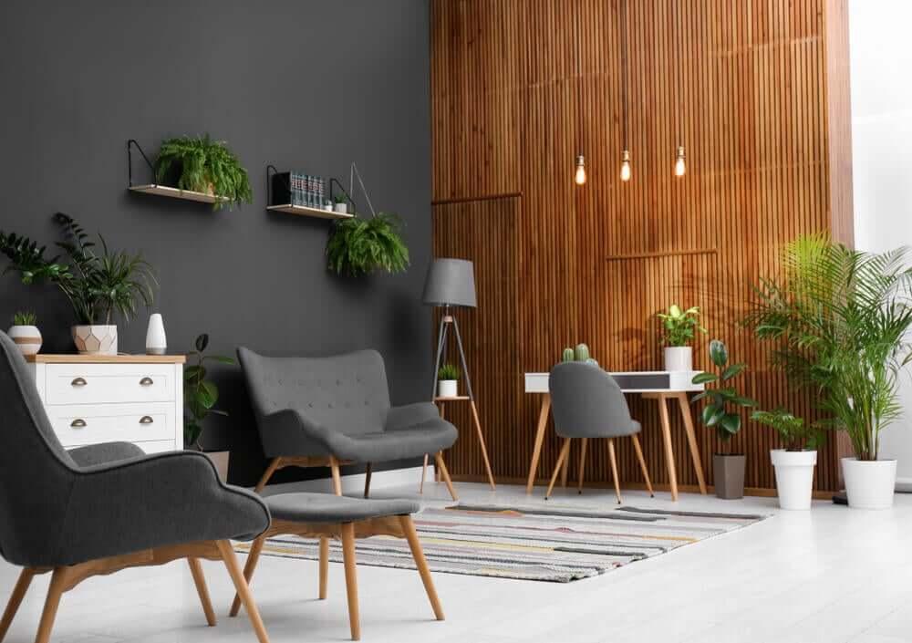 Aprenda a decorar os seus interiores com plantas