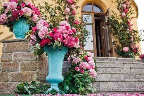 Mükemmel Güller İçin Bakım Önerileri