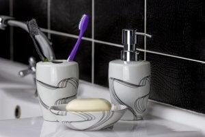 Diş fırçası ve sabunluk.