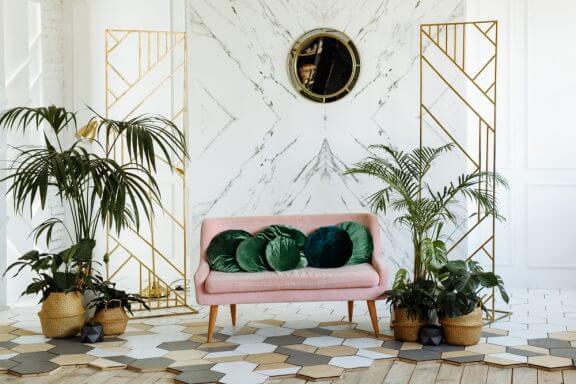 dekoratif palmiye ağaçları