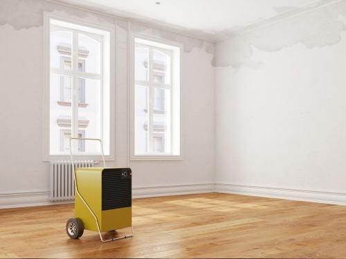 duvarlarınızı boyamadan önce sızdıran yerleri onarın