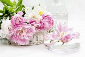 Örgü sepetlerde çiçekler