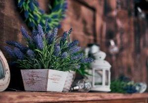 rustik tarzda çiçek saksıları