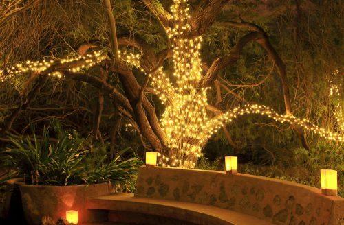 bahçede yılbaşı ışıkları
