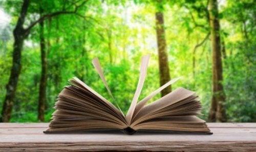 orman manzarasında kitap