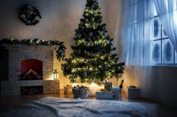 Gerçek çam bir Noel ağacının bir pencerenin yanına yerleştirilmesi ve düzenli olarak sulanması gerekir.