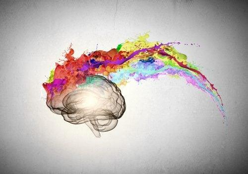 içinden renkler çıkan beyin