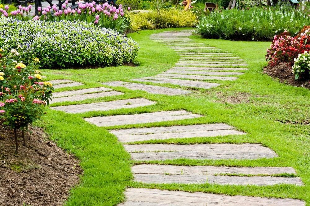 Kısa bitkilerle dolu geniş bahçede tahta yollar