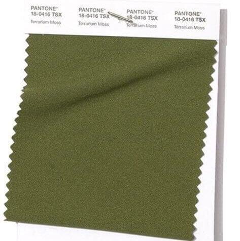 PANTONE 18-0416 Terrarium Moss