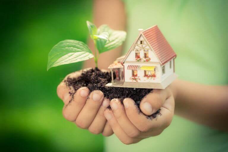 Avuç içinde toprak bitki ve ev maketi