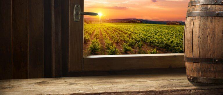 Manzaranın önünde şarap fıçısı