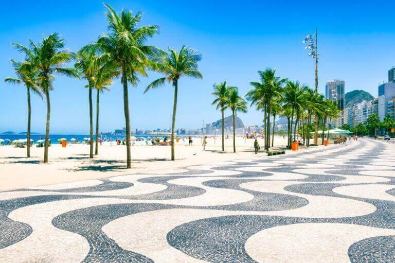 Palmiyeli sahil kaldırımı