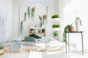 Evin her yerinde bitki yetiştirmek